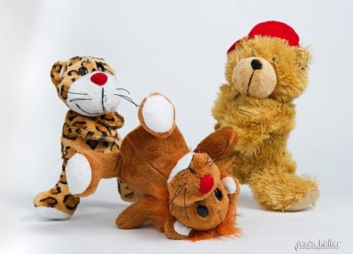 Lion, Tiger, Bear, B-Boy Battle